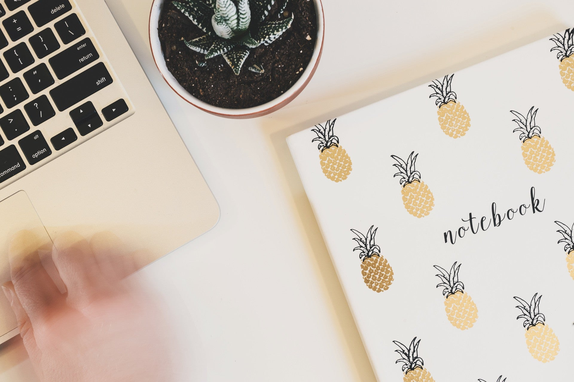 Stationery & Prints