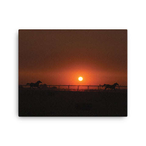 2 horses at Sunrise 16 x 20 - RC