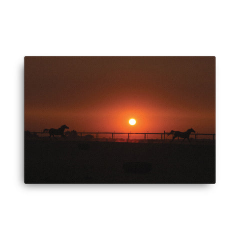 2 horses at Sunrise 24 x 36 -RC