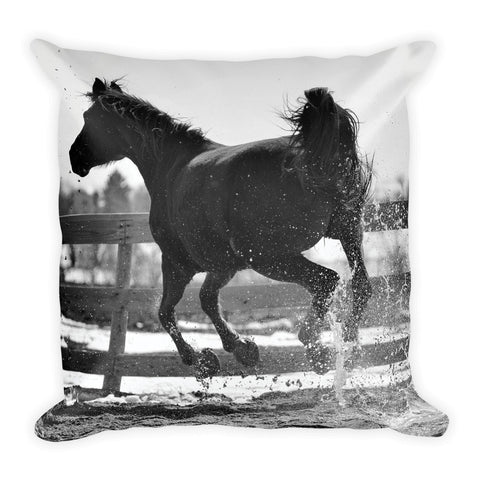 Leap of Freedom_Pillow_SH