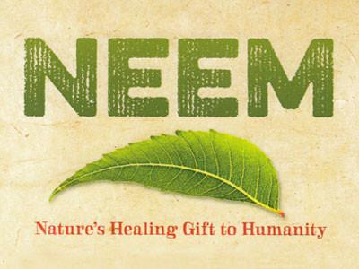 Indian Grocery Store - Neem - Singal's