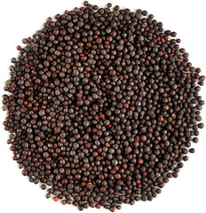 Mustard Seeds - Indian Spices - Singal's - Indian Grocery Store