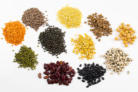 Indian Grocery Store - Lentils - Singals