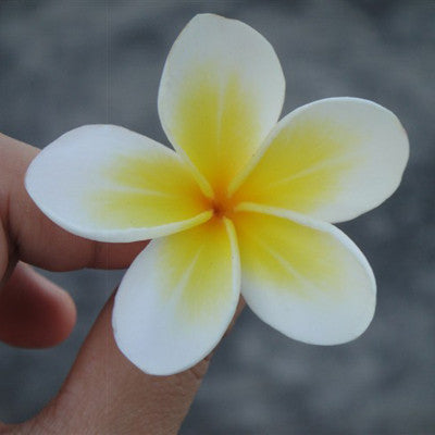 Summer Style Sunny Bright Plumeria Flower Foam Hair Clips 3 Sizes