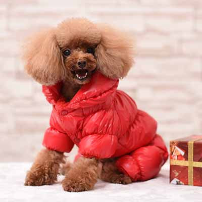 Blue Black Red Concise Pet Clothes Winter Dog Jumpsuit Rompers Coat