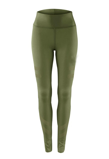 3 Colors Army Green Sporting Leggings Clothing For Women's Fitness