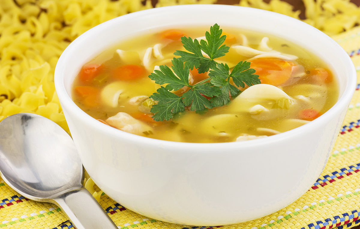 Old Fashioned Chicken Noodle Soup for Vitaclay