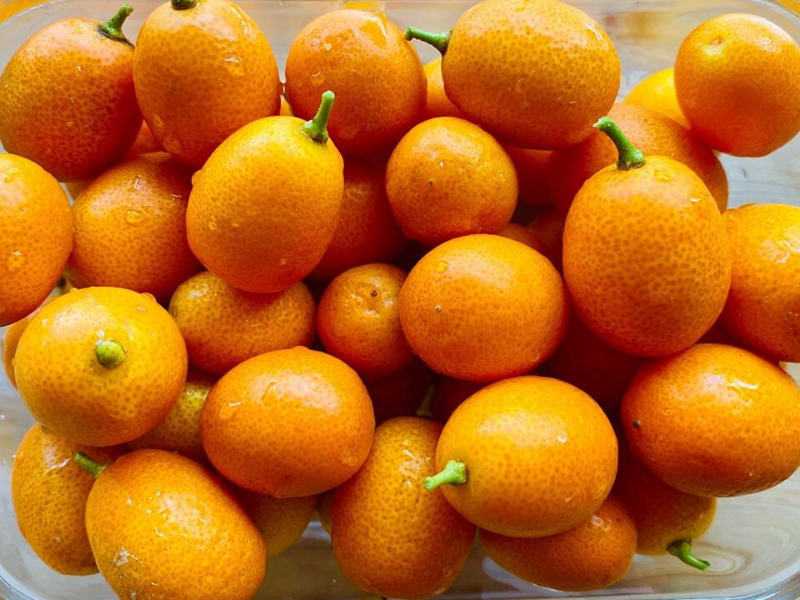 Antiviral and Anti-Cancer Longevity Superfood Kumquats