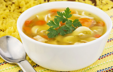 OLD FASHIONED CHICKEN NOODLE SOUP FOR VITACLAY BEST SOUP COOKER