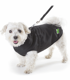 Pet Jacket with Built-In Harness 10""