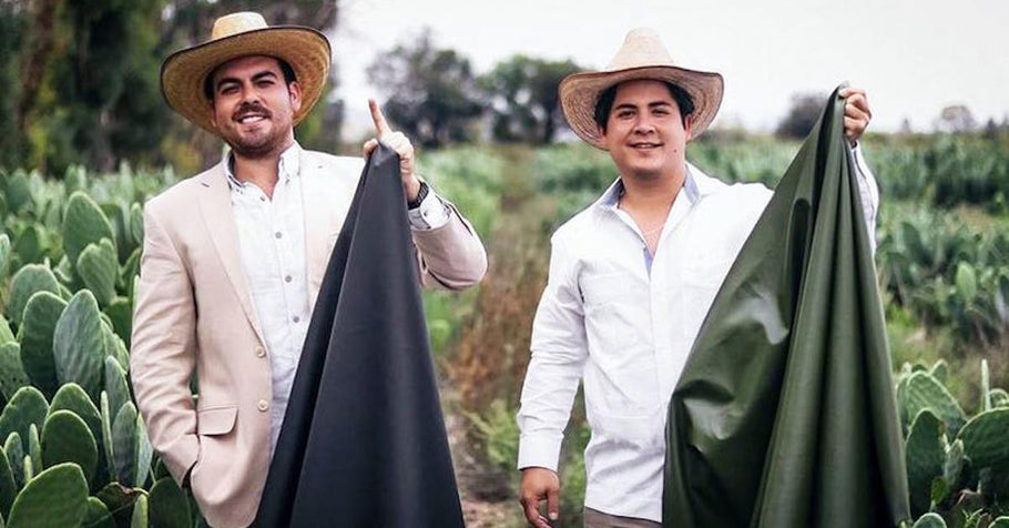 Mexican Entrepreneurs Invent Eco-Friendly Substitute For Leather Made From Cactus