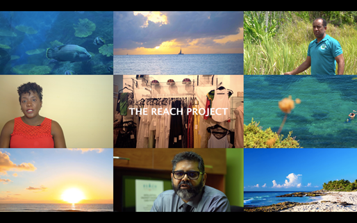 DOCUMENTARY TO WATCH: The REACH Project