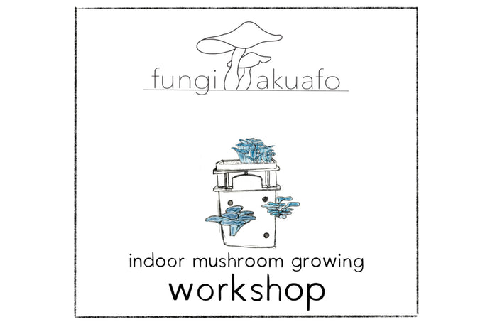 Introductory Series Workshop - Zoom - 2021 January 17 (Sunday) 2 Hours - Growing edible mushrooms in your home