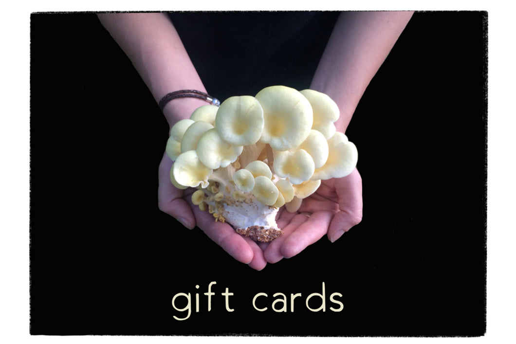 Gift Card - $15
