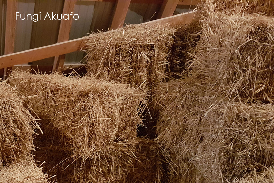 Straw Bale - 1/3 of a bale