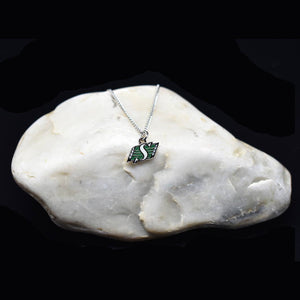 Saskatchewan Roughriders Necklace
