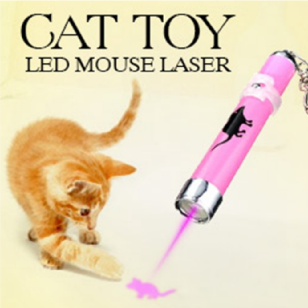 Fun Cat Laser Toy Giveaway