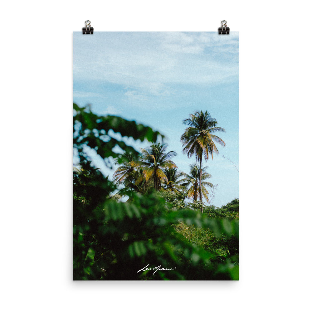 North Coast Rd,  Trinidad and Tobago (Poster) - Levi Marcus, Caribbean lifestyle, Trinidad and Tobago, Jamaica, Fashion
