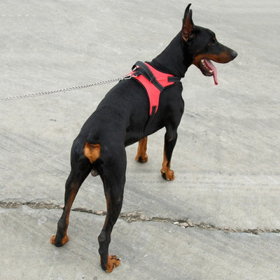 Heavy Duty Adjustable Padded Dog Vest Harness