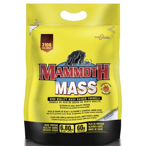 Mammoth Mass 6.8kg - gymstop