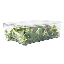 Fridge / Pantry container with lid (Large)