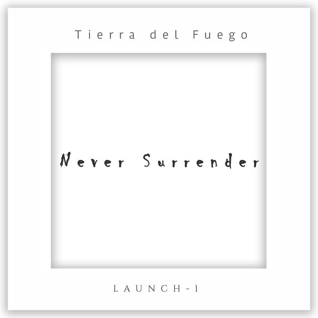Music - Never Surrender