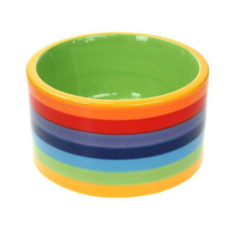 Dog bowl painted in rainbow colours with a green inner