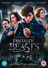 Fantastic Beasts and Where to Find Them, eBuzz.ie