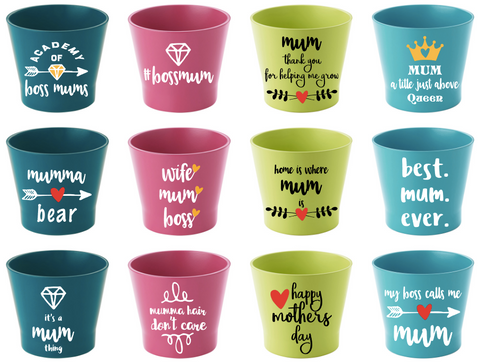 flower pot | mothers day range