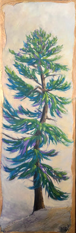 Pin canadien #1 - Pine tree #1