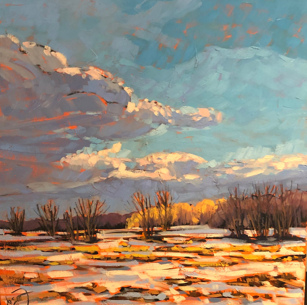 First snow, Prescott-Russel, ON -SOLD