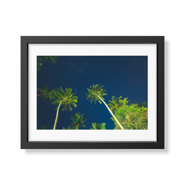 Travel Series: Starry Palm Trees