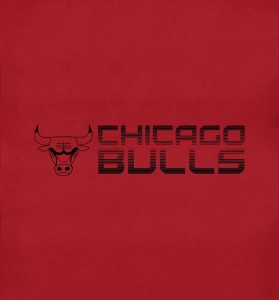 Chicago Bulls Brand Logo T-Shirt - NBA - GalaxT