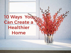 10 Ways You Can Create a Healthier Home