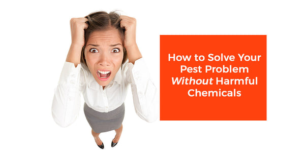 How To Solve Your Bug Problem Without Harmful Chemicals