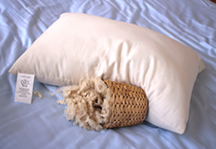 Natural Kapok Pillow Covered in Organic Cotton