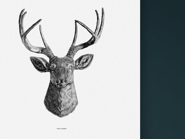 Hello Deer - Black and white art print of a dear by Hanna Candell