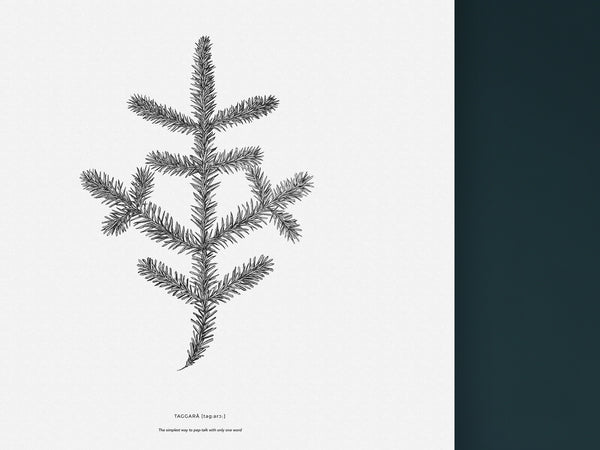Taggarå - Black and white art print of a spruce twig by Hanna Candell