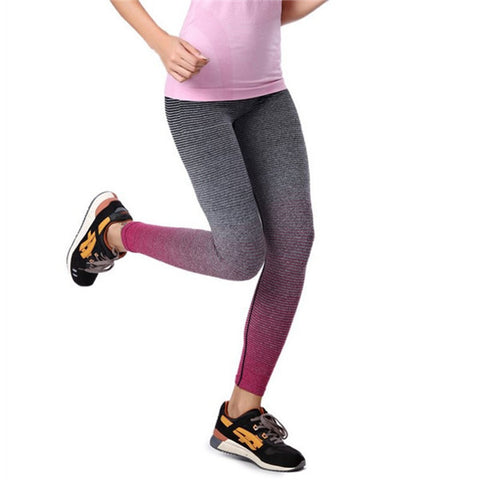 Workout In Style With These Ombre Fitness Leggings S-XL, 4 Colors To Choose/ Free Shipping