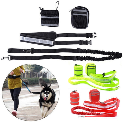 Elastic Dog Leash With Waist Belt