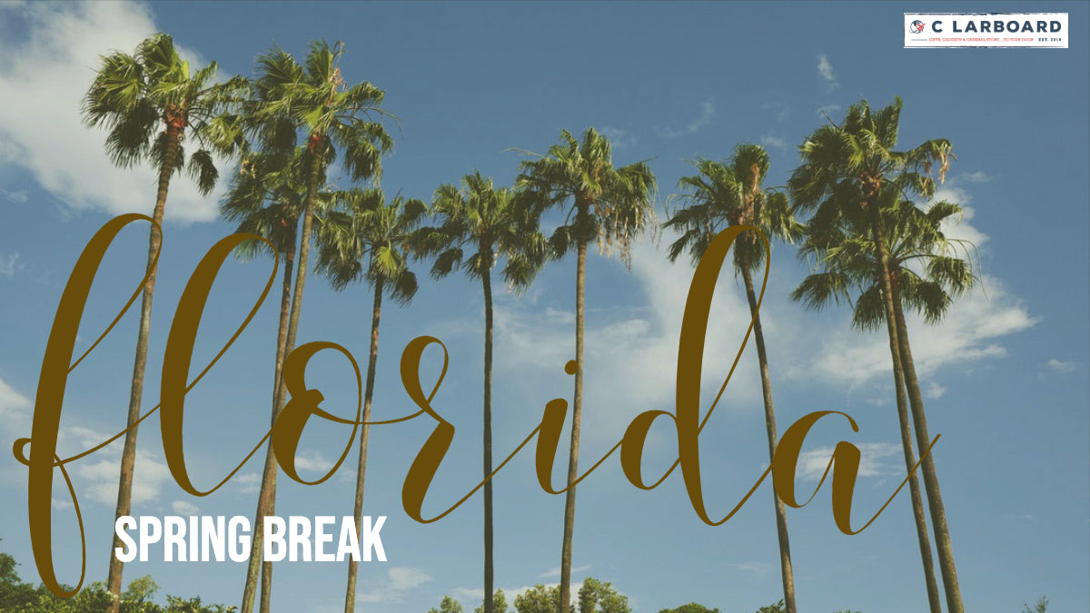 Travel Ideas for Florida Spring Break for ALL