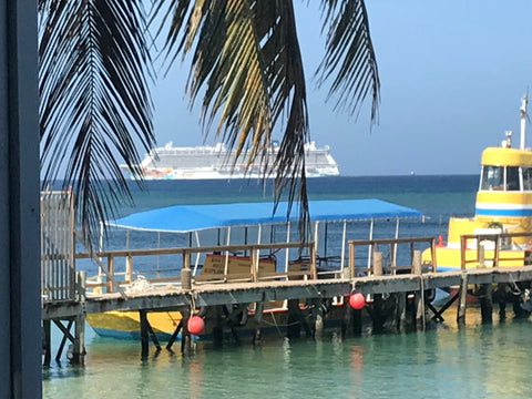 Navigating Roatan with travel things