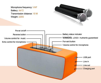 Learn more about our Portable Bluetooth Amplifier with 2 Microphones