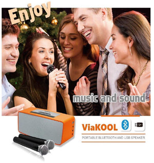 karaoke sing along with Portable Bluetooth Amplifier with 2 Microphones