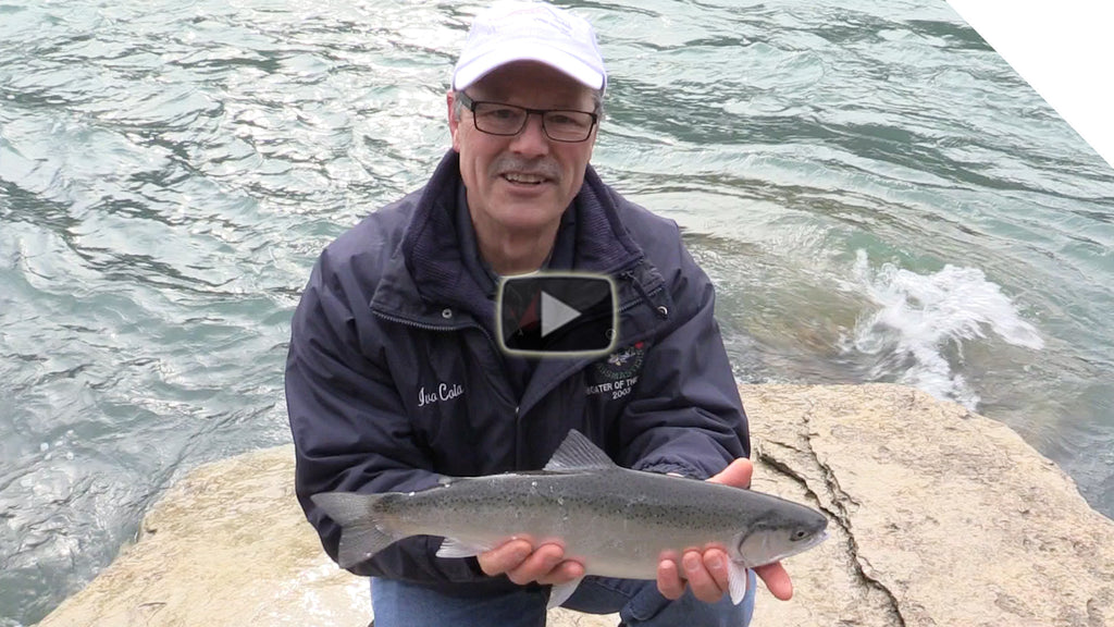 Steelhead Fishing from Shore in the Niagara River