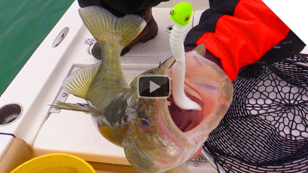 Jigging Tips for Walleye and Trout - Choosing the Right Artificial Bait