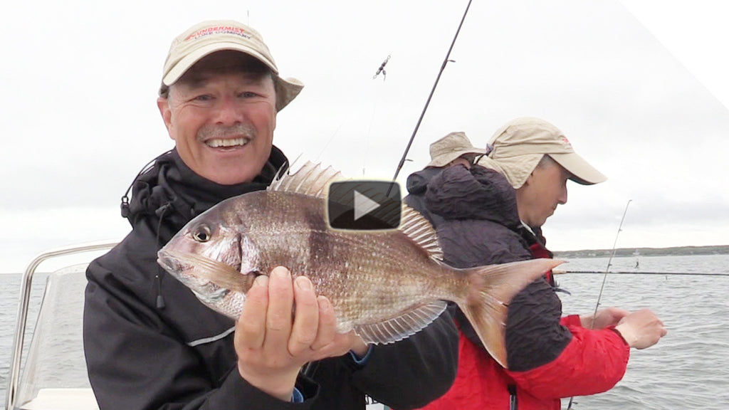 Porgy Fishing Fun (Scup)