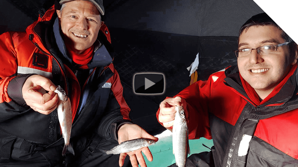 Ice Fishing Lake Simcoe for Cisco (Lake Herring) | Boatless Angler