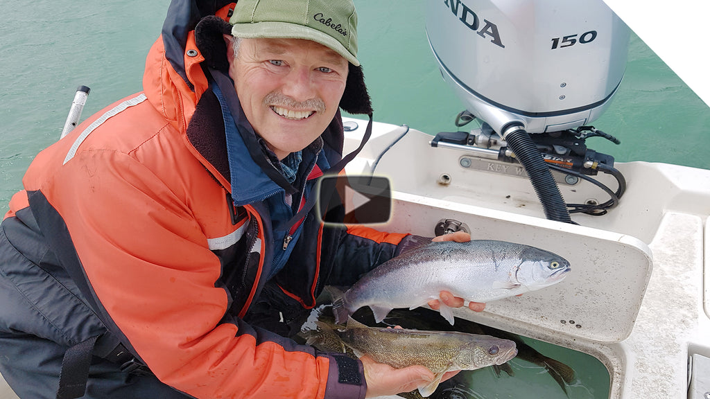 Walleye & Steelhead using live bait (Minnows)