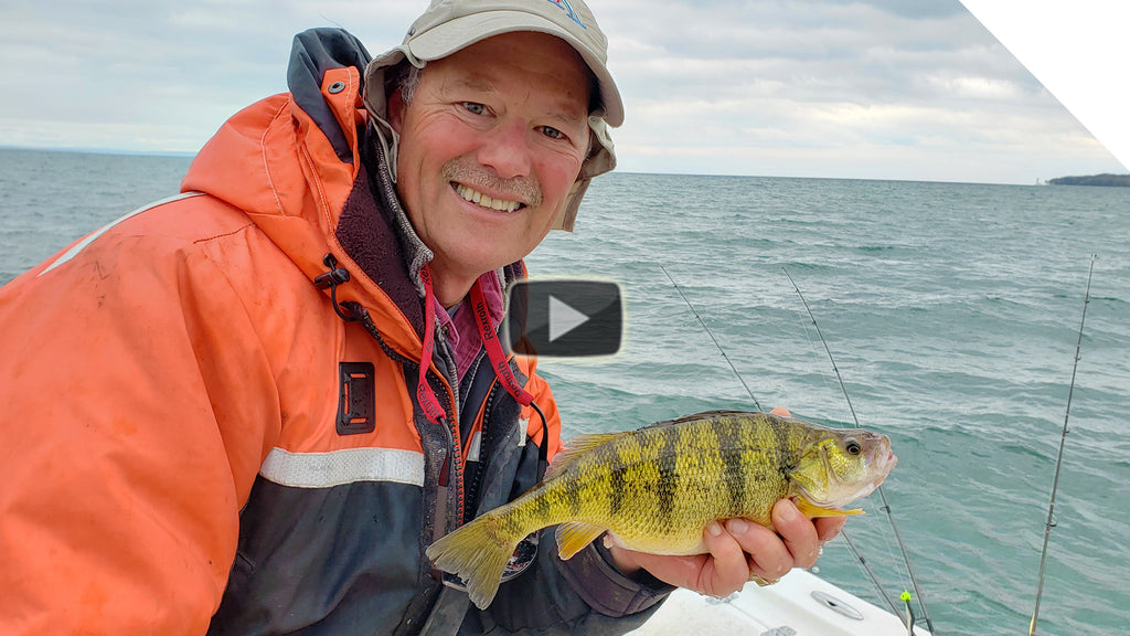 How to catch perch with minnows | Catching panfish